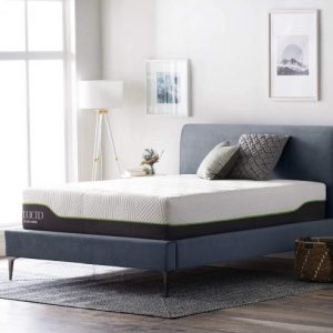 LUCID 12 Inch Twin Latex Hybrid Mattress
